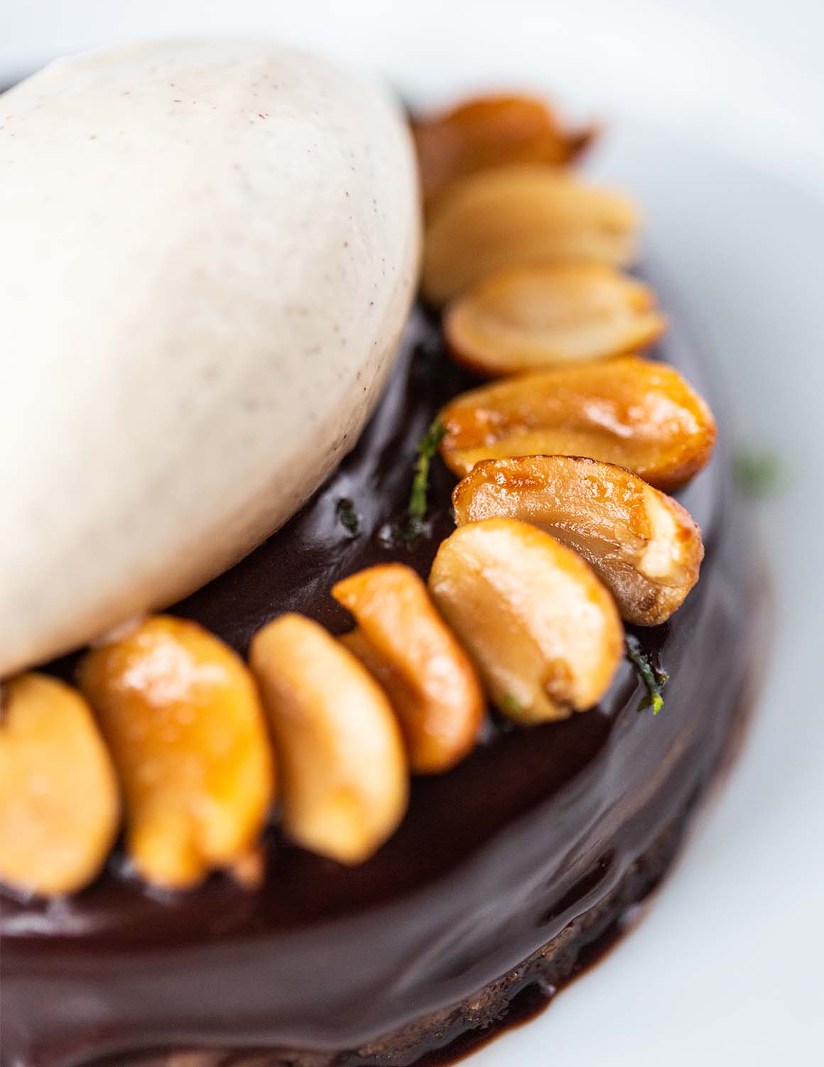 chocolate dessert with peanuts